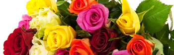 Rick Anthony's Flower Shoppe, your online florist in Lansing, Michigan (MI) and Holt, Michigan (MI)