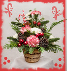 Sweet Little Christmas from Rick Anthony's Flower Shoppe in Lansing and Holt, MI