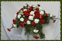 Red and White Affordable Casket Spray from Rick Anthony's Flower Shoppe in Lansing and Holt, MI